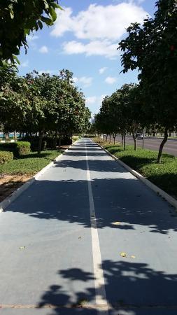 cycle-track-of-abu-dhabi
